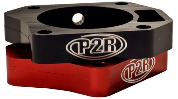 P2R_P329B_P329R1
